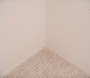 shower regrouting service northern beaches