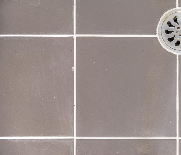 Re Grouting Bathroom Tiles: Tile Rescue & Regrouting. Broken Tile Repairs Northern Beaches