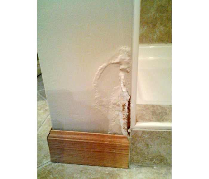 Bathroom Shower Leaking: Bathroom Waterproofing & Leaking Shower Repairs