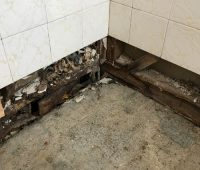 Property damage cause by leaking shower