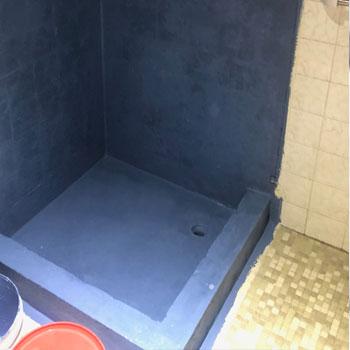 fix leaking shower mosman